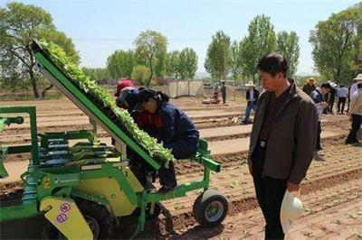 露地蔬菜种植全程机械化由京及冀